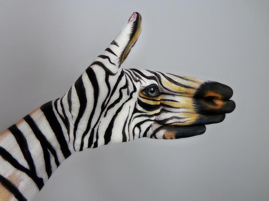 Zebra by WinxGirl27