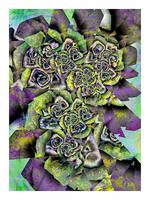 Neep Salbee Kru (Version Two) by OttoMagusDigitalArt