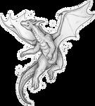 I AM a mighty dragon by Shon2