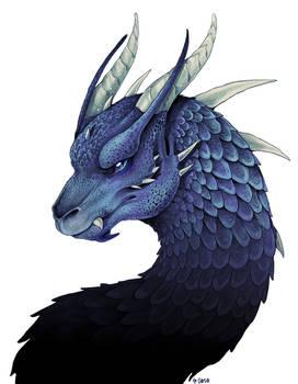 Saphira (colored)