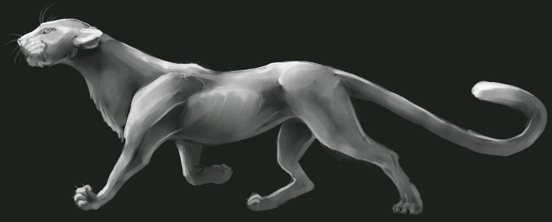 Prowl by xKaseix