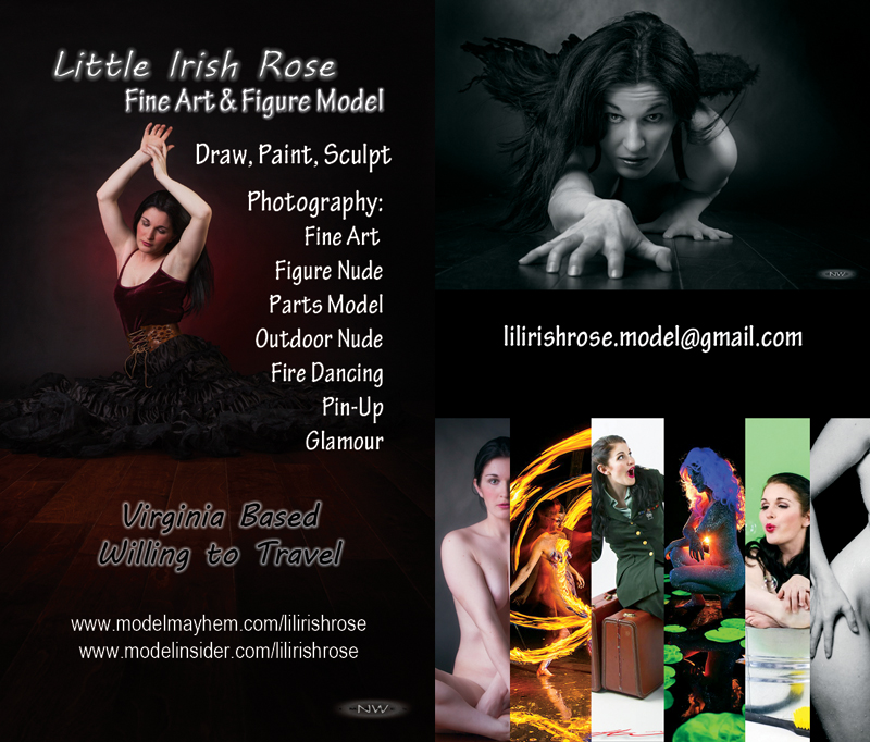 http://orig03.deviantart.net/bc31/f/2014/162/7/d/new_business_card_by_lilirishrose-d7k8hiw.jpg