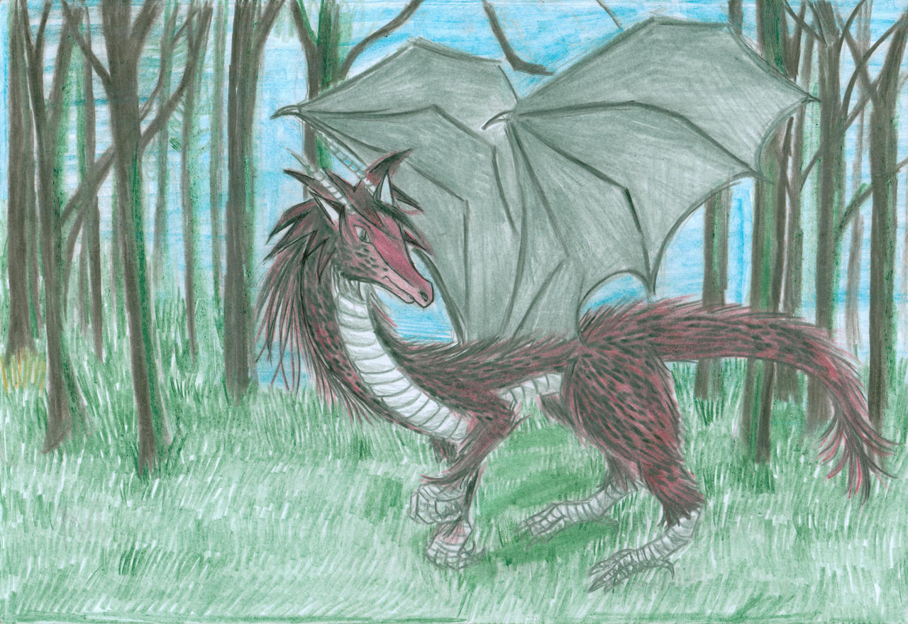 Furry Dragon Pics dragon furry- my first drawing of a dragonboxcarchildren