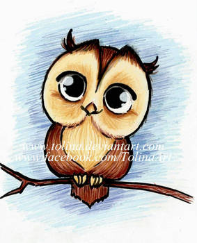 Chibi Owl