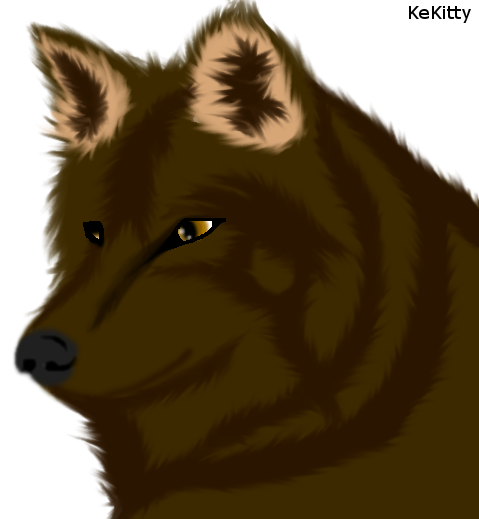 Realistic Wolf by KeKitty