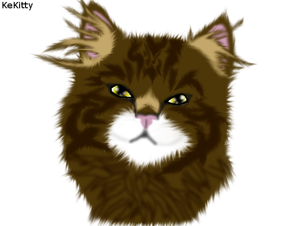 Realistic Cat 2 by KeKitty