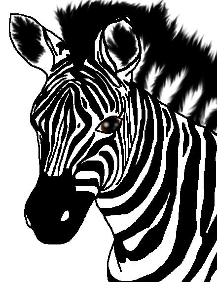 Zebra by KeKitty
