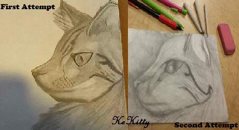 First And Second Attempt by KeKitty