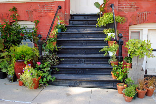 Green Stairway