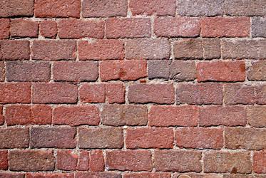 Brick Pavement 20100807
