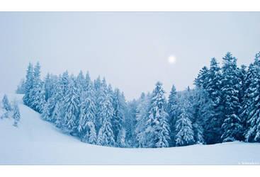 Frozen Sun by Limaria