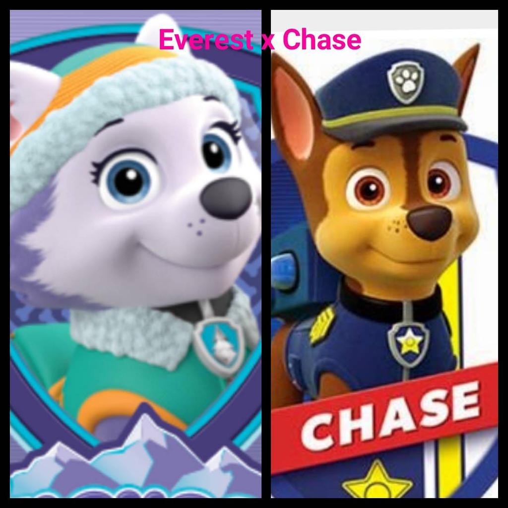 Everest x Chase by renhob27 on DeviantArt