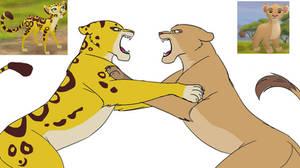 Fuli vs Tiifu: Rivals duels over Kion