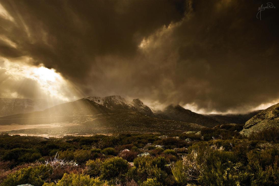 Terraformation by jadden