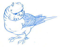 Crested Budgie Doodle