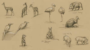 LA Zoo Sketches by OnyxSerpent