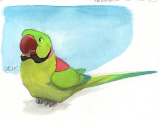 Inktober #30 - Alexandrine Parakeet by OnyxSerpent
