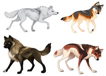 Wolf Stylized Character Refs by OnyxSerpent