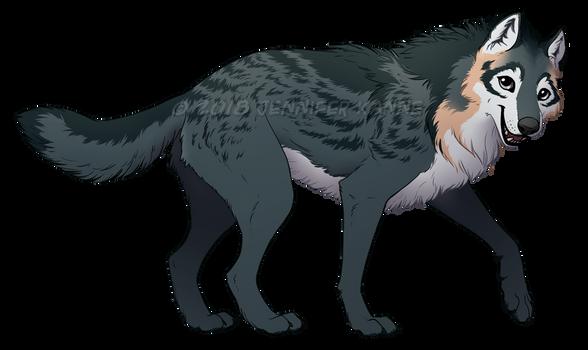 Wolf - Maia ref