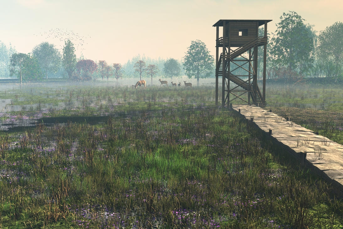 Marsh Morning by fence-post