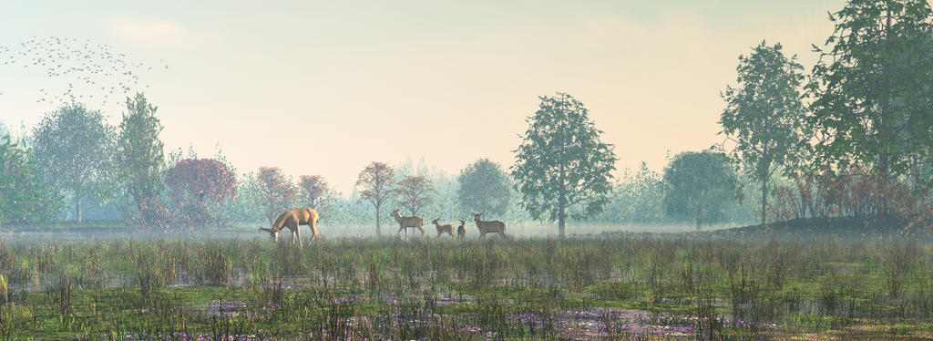 Marsh Morning 2 by fence-post