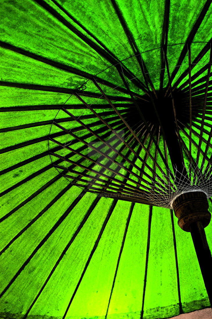 green parasol by Howie08