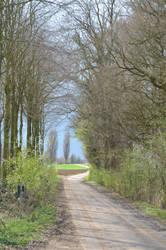 The Roman Path by Gevio