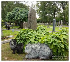 Adventure on the cemetery