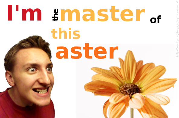 I'm the master of this aster