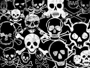 FannyKitty- Skulls by skulls-club