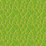 Pattern - Leaf Epidermis by dracontes