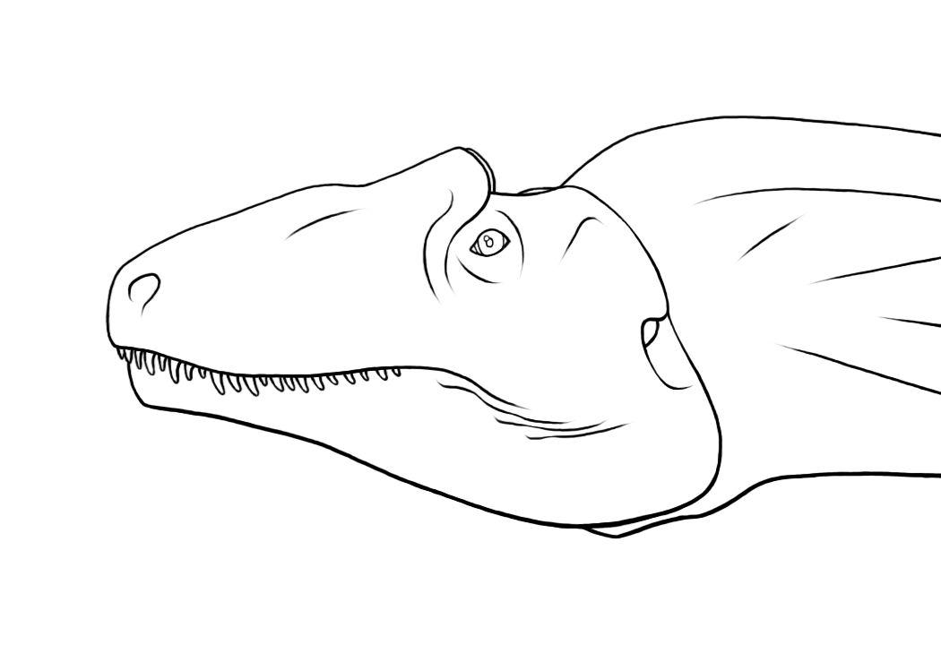 Allosaurus fragilis UUVP 6000 by dracontes