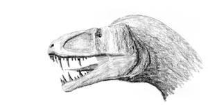 allosauroid shaded