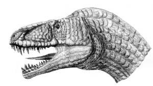 Allosauroid Textured