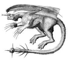 Mammalian dragon concept by dracontes