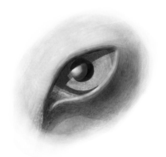 Feloid Eye by dracontes