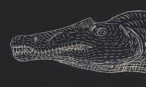 Spinosaur Head