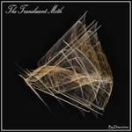 The Translucent Moth