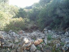 View of Barranco dos Aivados 4 by dracontes