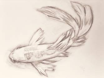 Koi fish by Booboobunni