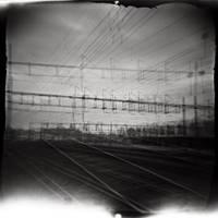 96. by PoLazarus2
