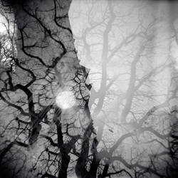 Bad Moon Rising by PoLazarus2