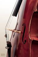 Cello II by wmp80