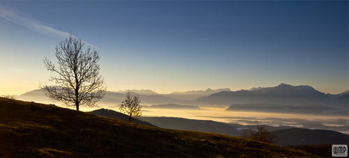 MB pure morning by wmp80