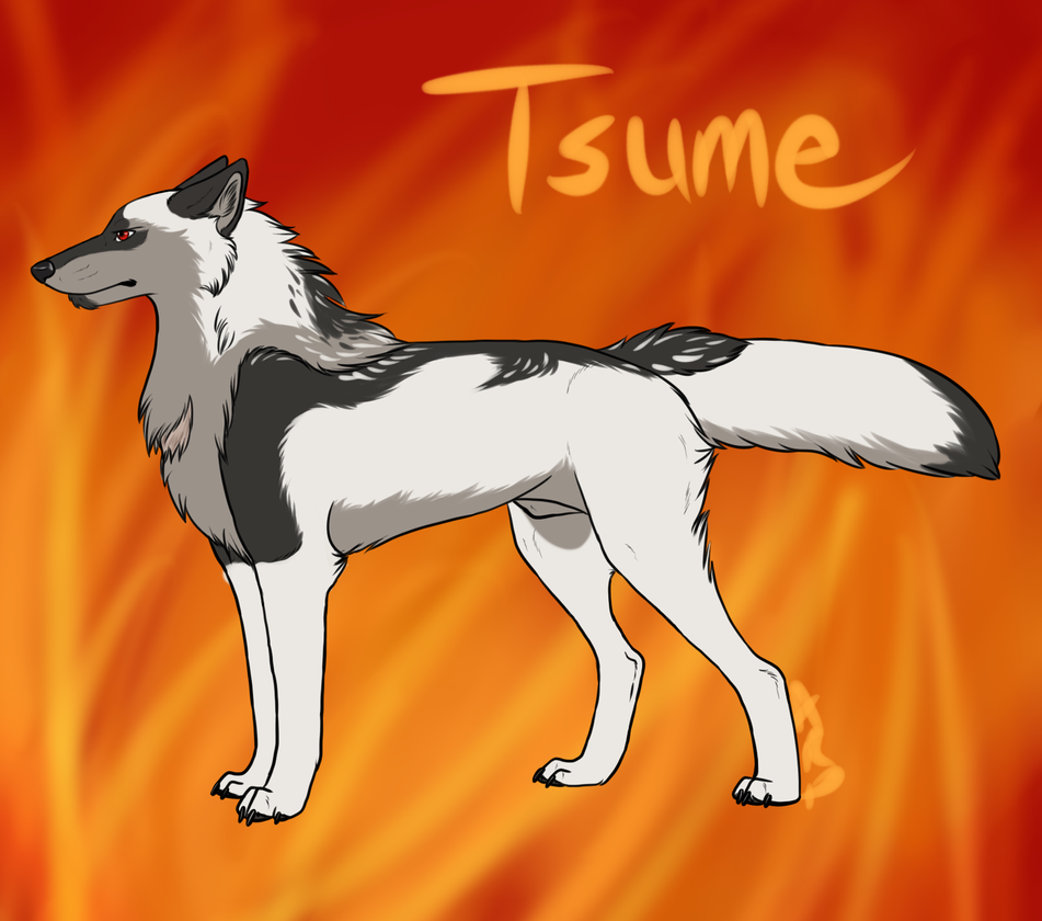 Tsume - Face Off by littlezombiesol