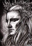 Tell me, Thranduil... by vvveverka
