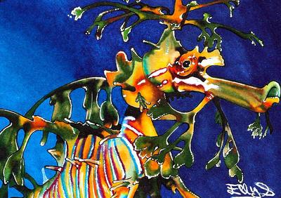 Sea Horse by vvveverka