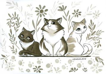 Petsitter cats by Liseth
