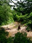 ZumStock Muddy River 1