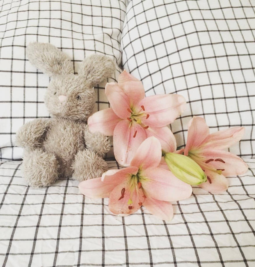 Plushie and Lilies